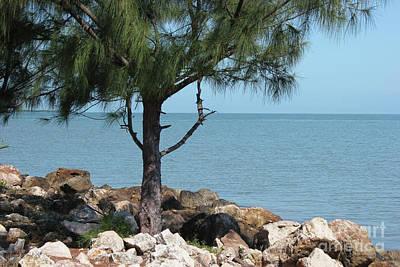 Belize Ocean Front Poster