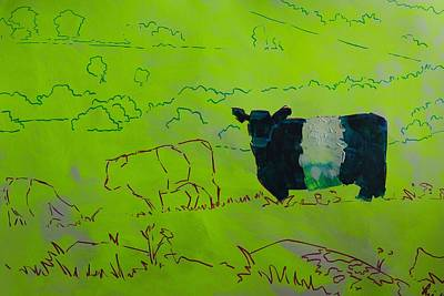 Belted Galloway Cow On Dartmoor Illustration Poster by Mike Jory