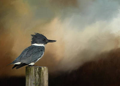 Belted Kingfisher At Dusk Poster by Carla Parris