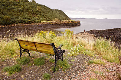 Bench At The Bay Poster