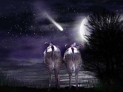 Beneath A Zebra Moon Poster by Carol Cavalaris