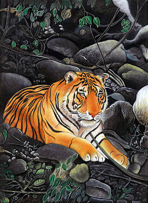 Bengal Tiger Wild Life Realistic Painting Miniature Watercolor Artwork Poster by A K Mundra