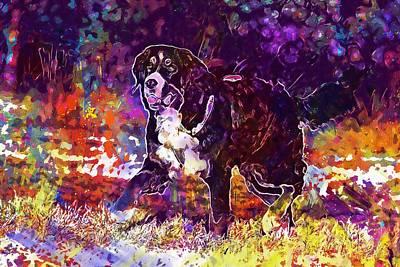 Bernese Cattle Dog Bitch  Poster