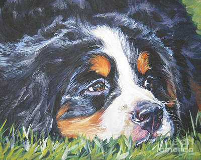 Bernese Mountain Dog In Grass Poster by Lee Ann Shepard