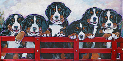 Bernese Mountain Dog Puppies Poster by Nadi Spencer