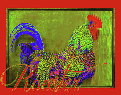 Bert The Rooster Red Poster