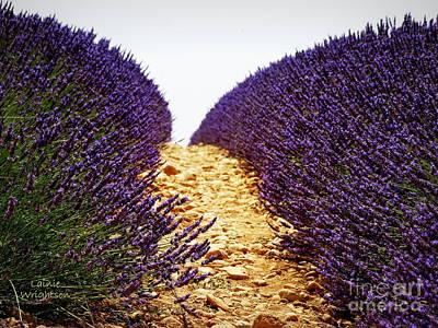 Between The Purple Poster