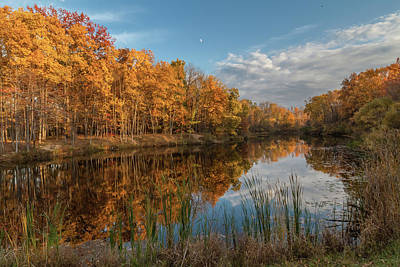 Beyer's Pond In Autumn Poster