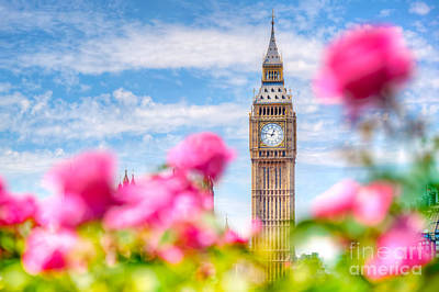 Big Ben,, London Uk. View From A Public Garden With Beautiful Roses Flowers. Poster by Michal Bednarek