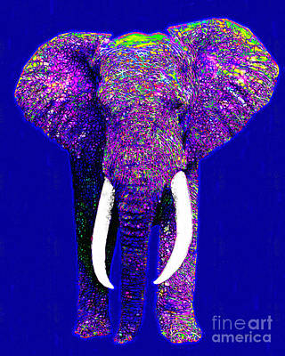 Big Elephant 20130201m118 Poster by Wingsdomain Art and Photography