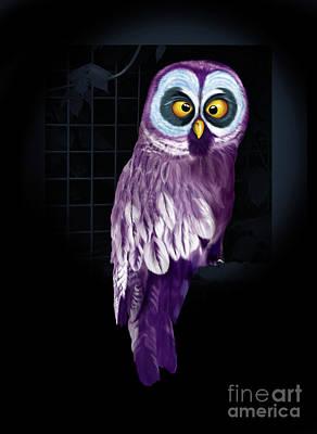 Big Eyed Owl Poster