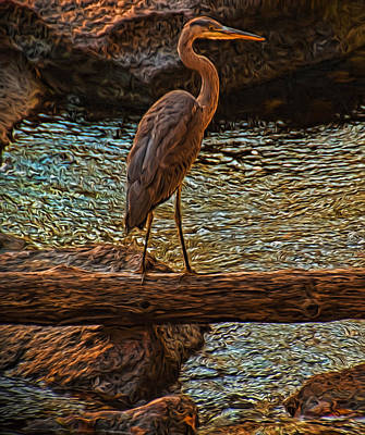 Big Falls Blue Heron Poster by Trey Foerster