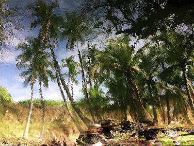 Big Island Reflections Poster