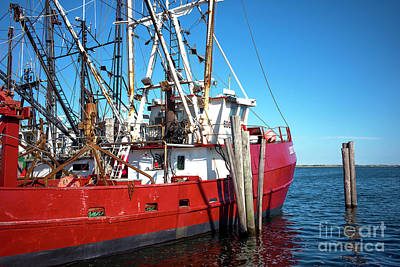 Poster featuring the photograph Big Red In Barnegat Bay by John Rizzuto
