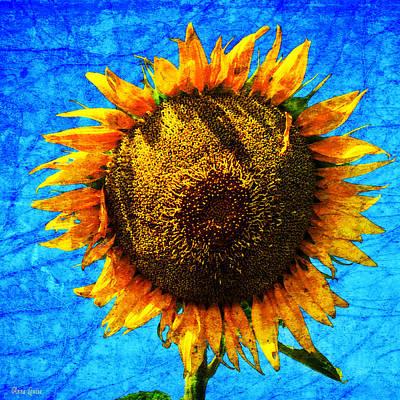 Big Sunflower Poster