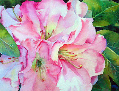 Biltmore Rhodies Poster by Judy Mercer