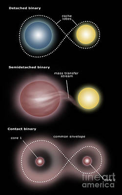 Binary Star Systems Poster by Spencer Sutton
