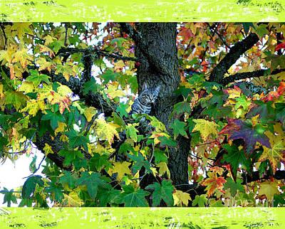 Bingo In Tree Poster