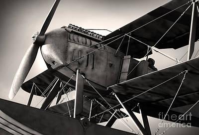 Biplane Poster by Carlos Caetano