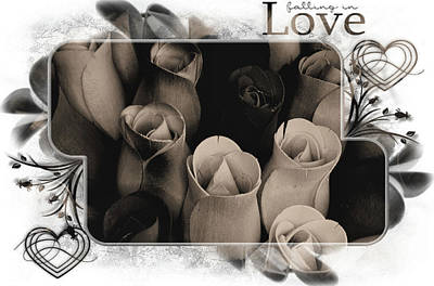 Birch Bark Roses 8 Poster by Cindy Nunn