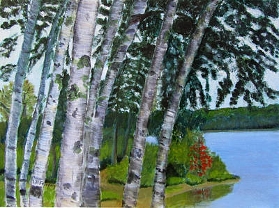 Poster featuring the painting Birches At First Connecticut Lake by Linda Feinberg