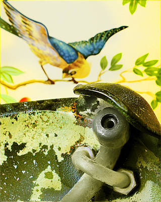 Bird Behind A Fountain Poster