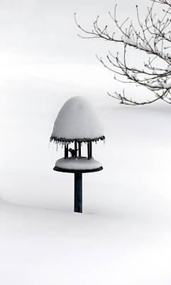 Bird Feeder In Snow Poster