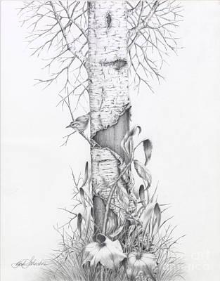 Bird In Birch Tree Poster