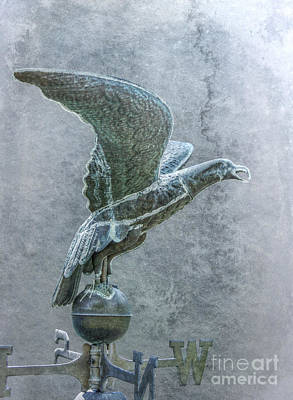 Bird In Flight Weathervane Poster by Randy Steele