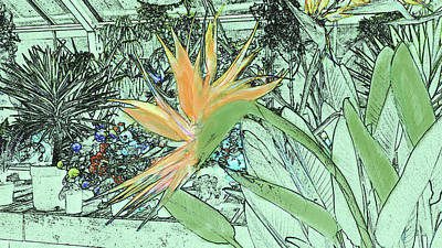 Poster featuring the photograph Bird Of Paradise In The Hothouse by Nareeta Martin