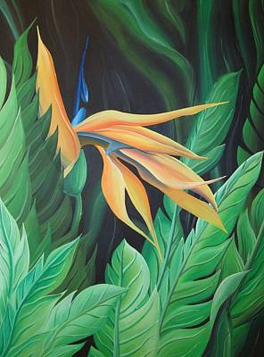 Bird Of Paradise Poster by William Love