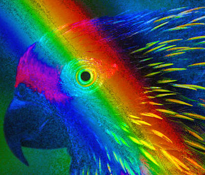 Poster featuring the painting Bird Of The Rainbow by David Lee Thompson