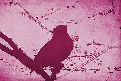 Bird On A Branch In Pink Poster by Emily Kay