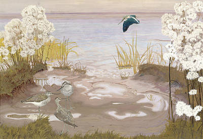 Bird On The Mud Flats Of The Elbe Poster by Friedrich Lissmann