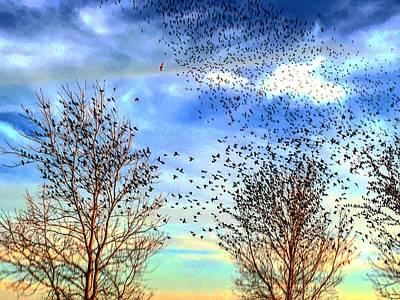 Bird Swarms Versus Hawks On The Prairie Poster