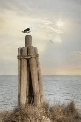 Birds Eye View Poster by Lori Deiter