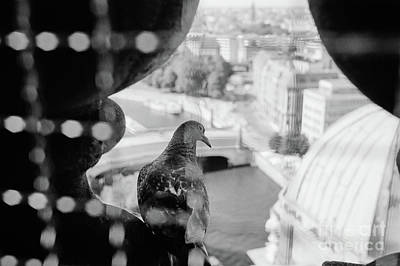 Poster featuring the photograph Bird's Eye View Of Berlin by Dean Harte