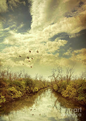 Birds Flying Over A River Poster by Jill Battaglia
