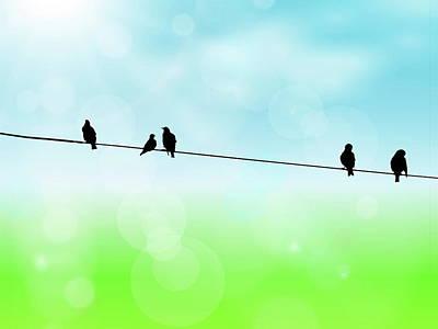 Birds Hanging Around Poster