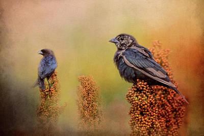 Birds In The Milo Crop Poster