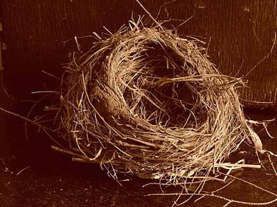 Bird's Nest Sepia Poster
