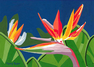 Poster featuring the painting Birds Of Paradise by Terry Taylor