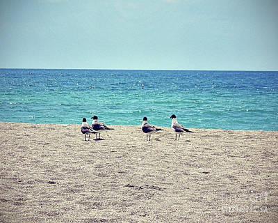Birds On A Beach Poster by Chris Andruskiewicz