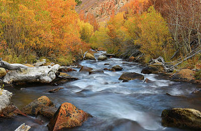 Poster featuring the photograph Bishop Creek Fall Season by Dung Ma