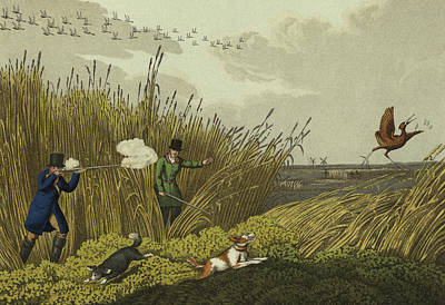 Bittern Shooting Poster by Henry Thomas Alken