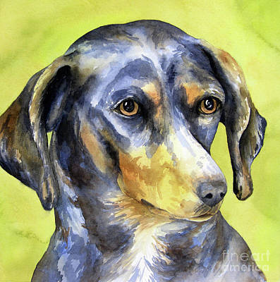 Black And Tan Dachshund Poster by Cherilynn Wood