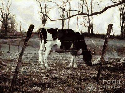 Black And White - Cow In Pasture - Vintage Poster by Janine Riley