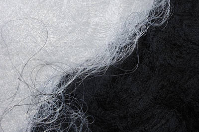 Black And White Fibers - Yin And Yang Poster by Matthias Hauser