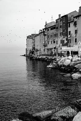 Black And White - Rovinj Venetian Buildings And Adriatic Sea, Istria, Croatia Poster