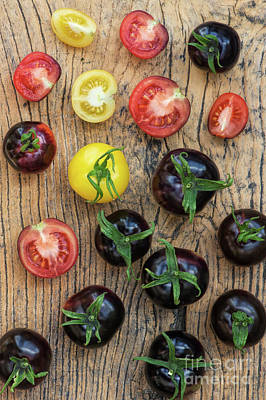 Black And Yellow Tomatoes Poster